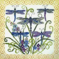 51635 Dragonfly Jewels