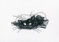 M667 Среди черных котов