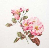 412 Rosa Leersum