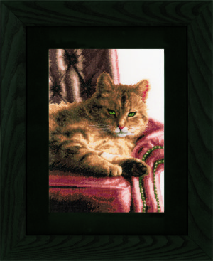 PN-0021762 Relaxed Tabby