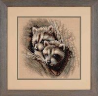 35253 Two Raccoon Cubs