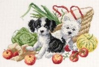 BK887 Dogs and the Fruit Basket