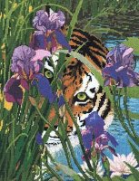 30907 Peeking Tiger